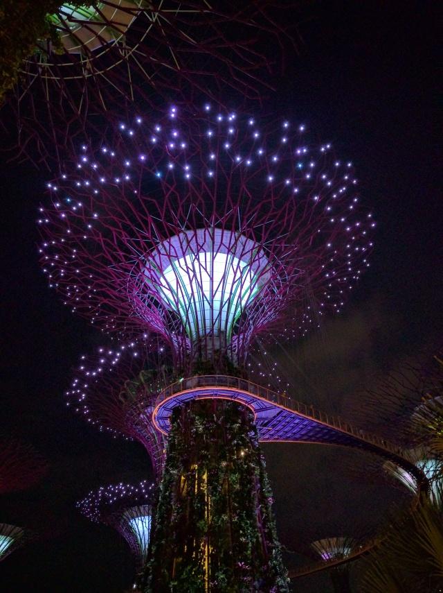 singapore-2016-3013
